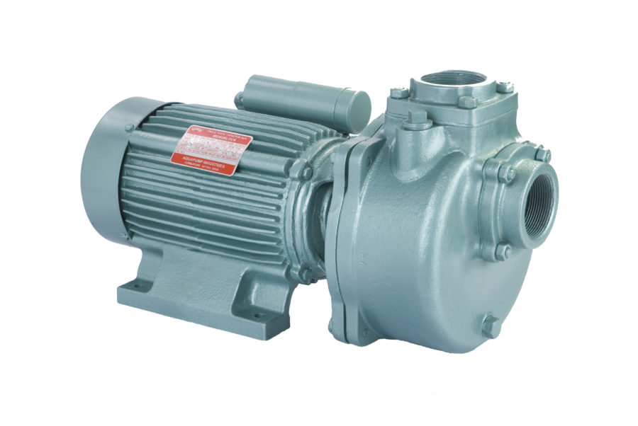Domestic Water Pumps India, Domestic Monoblock Pump